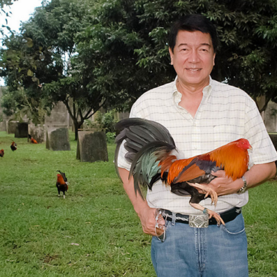 Top 10 Gamefarms and Gamefowl Breeders in the Philippines